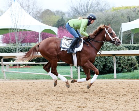 Malagacy - Oaklawn Park - March 16, 2017