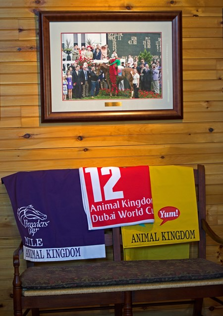 Animal Kingdom tribute and memorabilia in office Scenes at Denali Stud near Paris, Ky., on March 2, 2017, include farm manager Gary Bush with Keertana and her 2017 War Front colt, plus Animal Kingdom memorabilia.