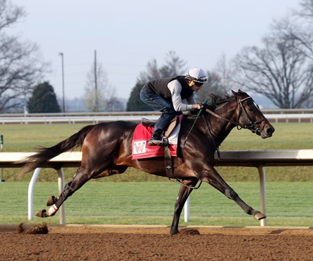 McCraken - Keeneland - March 27, 2017