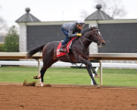 McCraken with Brian Hernandez Jr. works five furlongs in 1:00 at Keeneland in preparation for the Blue Grass Stakes (gr. II). Trainer Ian Wilkes.