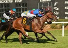 Fifty Five Sets Stakes Record in Florida Oaks