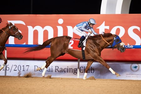 Long River wins the Al Maktoum Challenge Round 3