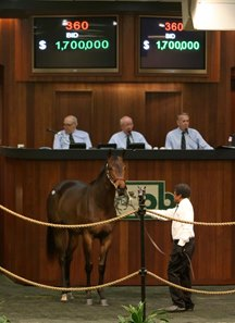 Hip 360 sold for $1.7 million at the Ocala Breeders' Sales Co.'s March sale of 2-year-olds in training
