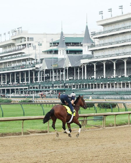 Practical Joke - Gallop - Churchill Downs - 04-30-17