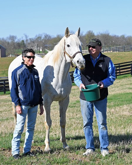 Silver Charm, now 23, at Old Friends near Georgetown, Ky., where he is celebrating the 20th anniversary of his Kentucky Derby (G1) win. Shown with Michael Blowen (right) and his exercise rider Joe Steiner, who rode Silver Charm leading up to the Derby.