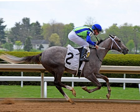 Buy Sell Hold with Florent Geroux wins race 2, the Winter Quarter, at Keeneland becoming the first winner for her sire Violence. April 20, 2017 Keeneland in Lexington, Ky.