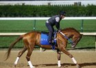 Gun Runner gallops at Churchill Downs