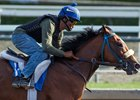 Gormley works April 22 at Santa Anita Park