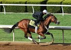 Toyota Blue Grass Stakes winner Irap works at Keeneland under Julien Leparoux