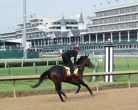 McCraken - Gallop - Churchill Downs - 04-28-17