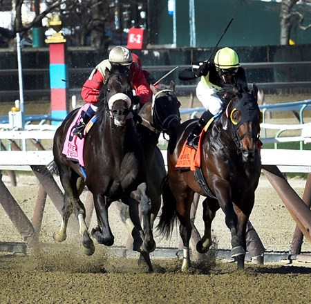#7 Green Gratto with jockey Chris DeCarlo aboard holds off a late rally from favorite #8 Unified with jockey Javier Castellano in the 117th running of the Grade 1 Carter  at Aqueduct Race Track Saturday April 8, 2017 in Ozone Park, N.Y.