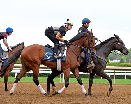 Practical Joke