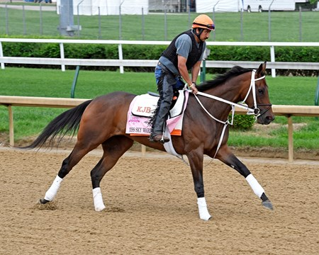 Miss Sky Warrior - Churchill Downs - April 30, 2017