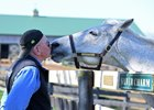 Michael Blowen greets Silver Charm at Old Friends