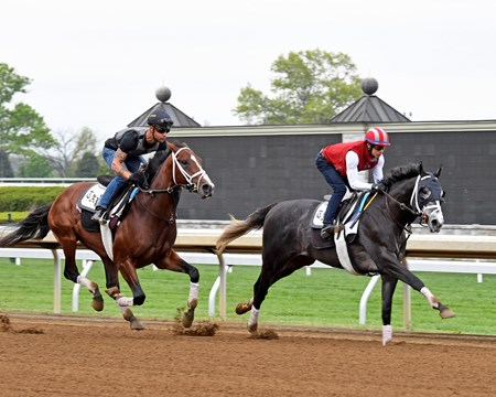 Tapwrit with Jose Ortiz Jr. (front) works in company with Wissam. Kentucky Derby contenders work at Keeneland.  April 21, 2017 Keeneland in Lexington, Ky.