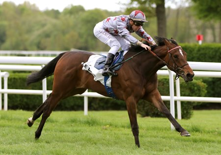 All This Time wins the Prix Mercier-la Vendee at Lion d'Angers