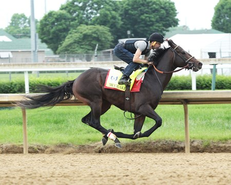 McCraken - Work - Churchill Downs - 04-30-17
