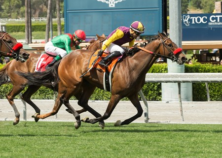 Golden Eagle Farm's Hillhouse High and jockey Corey Nakatani win the Gr. II $200,000 Royal Heroine Stakes Saturday April 8, 2017 at Santa Anita Park, Arcadia CA.