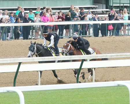 Tapwrit (Outside), Patch (Inside) - Work - Churchill Downs - 04-28-17