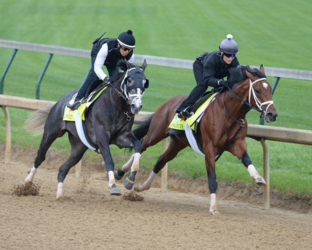 Patch (inside) and Tapwrit