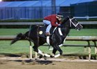 Uncontested works April 25 at Churchill Downs