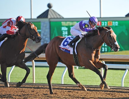 (April 8, 2017)  Longshot Irap (#6) Julien Leparoux up, holds off Practical Joke, to upset the Gr.2 Toyota Blue Grass Stakes at Keeneland...