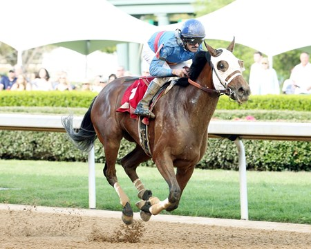 MINISTRY The Rainbow Miss - The 39th Running Oaklawn Park  Hot Springs, Arkansas April 1, 2017    Race #09 Purse $100,000 6 Furlongs  1:10.44 Starfish Stable LLC, Owner Jaime N. Gonzalez, Trainer Thomas Pompell, Jockey Superstar Bea (2nd) Ms Fifty First St. (3rd) $6.60  $3.20  $2.20 Order of Finish - 1, 2, 6, 3 Please Give Photo Credit To:  Coady Photography