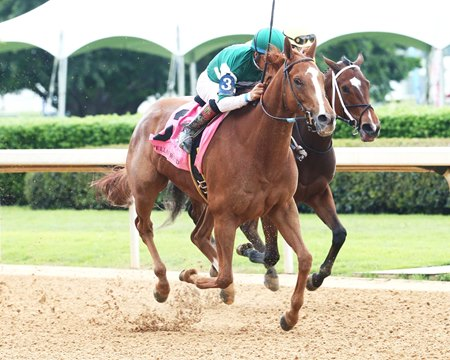 Stellar Wind defeats Terra Promessa in the Apple Blossom