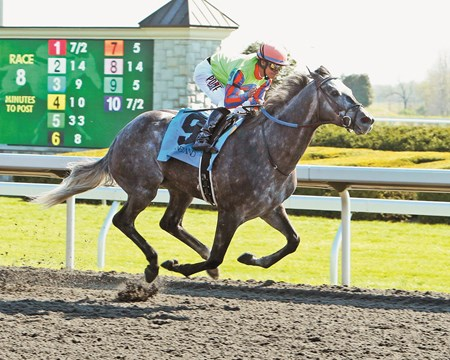 Frac Daddy wins the 2014 Ben Ali Stakes