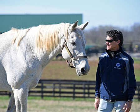 Silver Charm, now 23, at Old Friends near Georgetown, Ky., where he is celebrating the 20th anniversary of his Kentucky Derby (G1) win. Shown with his exercise rider/jockey Joe Steiner, who rode Silver Charm leading up to the Derby.