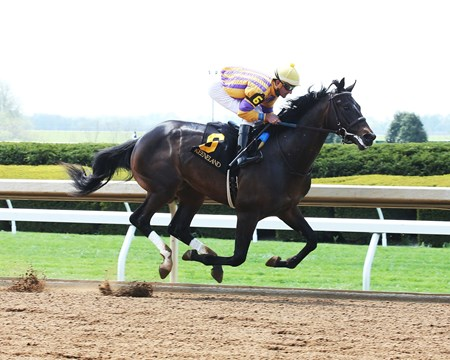Ten City maiden win at Keeneland on April 19, 2017
