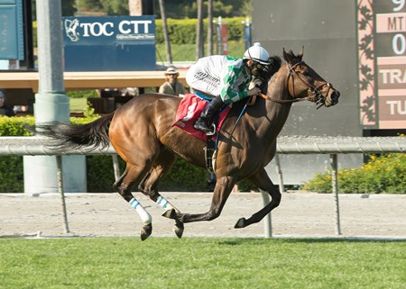 Joe L. Turner's Sircat Sally and jockey Mike Smith win the Grade III, $150,000 Providencia Stakes, Saturday, April 8, 2017 at Santa Anita Park, Arcadia CA.