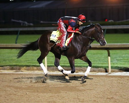 Classic Empire - Gallop - Churchill Downs - 04-25-17