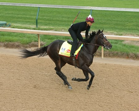 McCraken - Gallop - Churchill Downs - 04-23-17