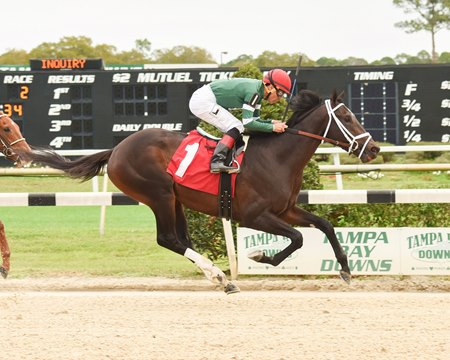 Late bloomer Action Everyday looks to move forward for Todd Pletcher