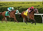 Itsinthepost wins the Elkhorn Stakes over Charming Kitten
