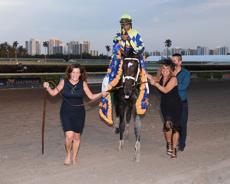 Always Dreaming wins the 2017 Florida Derby