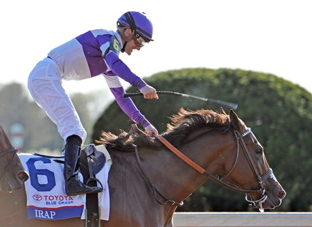 (April 8, 2017)  Longshot Irap (#6) Julien Leparoux up, holds off Practical Joke, to upset the Gr.2 Toyota Blue Grass Stakes at Keeneland