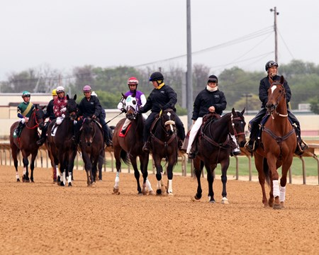 Russell Road leads the post parade prior to The 1st Running of Russell Road Stakes at Charles Town on April 22, 2017.