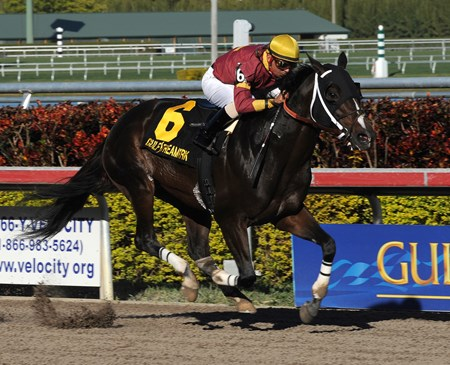 Big Drama captures the Mr. Prospector Stakes at Gulfstream Park.
