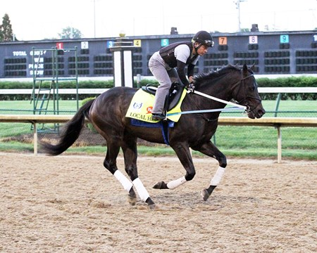 Local Hero - Gallop - Churchill Downs - 04-26-17