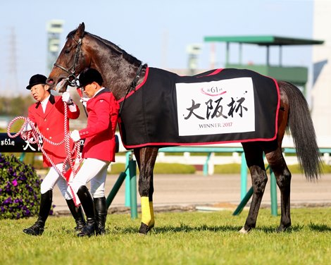 Japanese Horse Of The Year Headlines Tenno Sho Bloodhorse