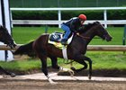 J Boys Echo working five furlongs