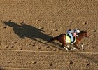Practical Joke trains at Churchill ahead of the Kentucky Derby