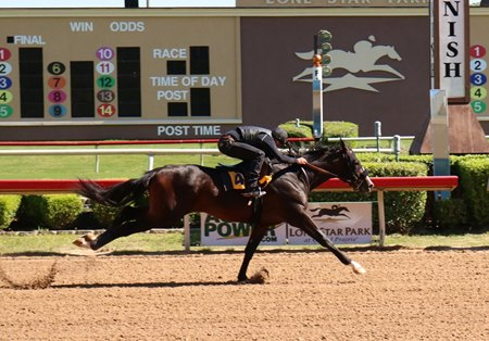 The Texas 2-year-olds in training sale will be held April 10 with the under tack show set for April 8