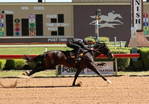 The Texas 2-Year-Olds in Training Sale will be held April 10 with the under tack show set for April 8.