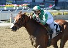 Highway Star wins the Distaff Handicap at Aqueduct