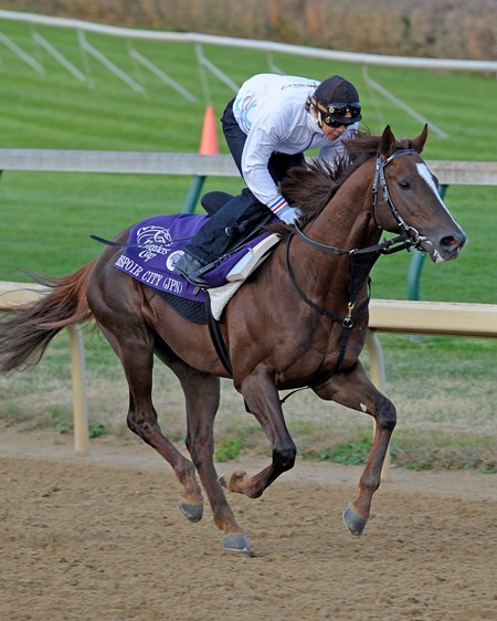 Japan's Espoir City galloping at Churchill Downs prior to the 2010 Breeders' Cup Classic