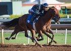 Battle of Midway Logs Final Work for Kentucky Derby