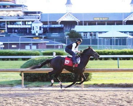 McCraken -  Breeze - Churchill Downs - 04-18-17